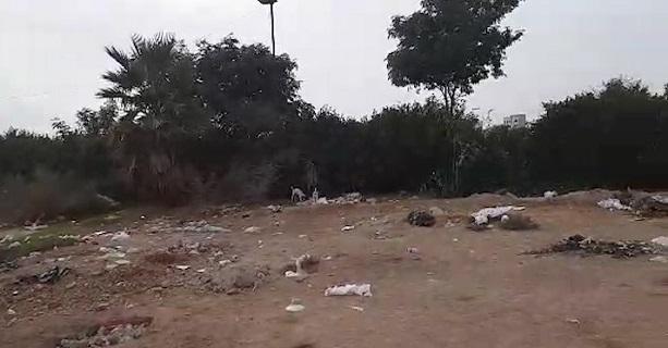 وضعیت ساحل کیان پارس در اهواز + فیلم