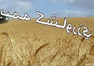 تمدید بیمه محصولات زراعی دراستان کردستان تا پایان آذر