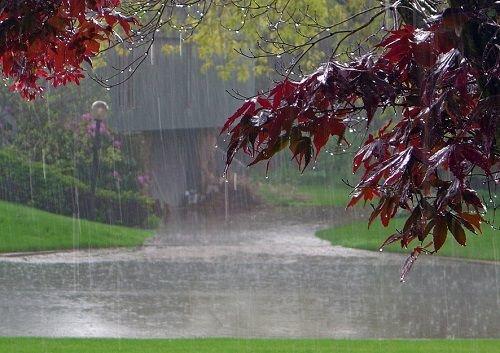 بارش باران در نقاط مختلف ایلام/آمادگی مدیریت بحران استان