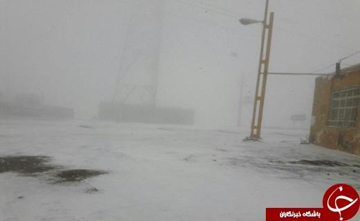 آغاز بارش برف در گردنه های استان قزوین