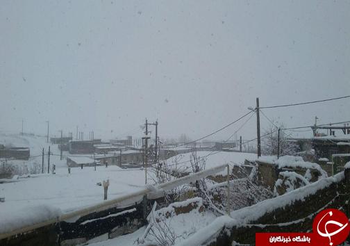 آغاز بارش برف در لرستان + عکس