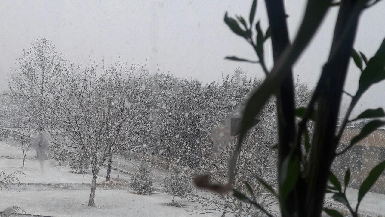 روز برفی در همدان+ تصاویر