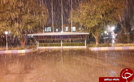 اولین بارش برف در قزوین