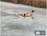 باشگاه خبرنگاران -عملیات نفسگیر نجات سگ از رودخانه یخزده +فیلم