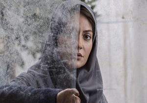 روزهای پایانی «دارکوب» برای رسیدن به سیمرغ فیلم فجر