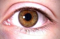 عواملی که سلامت چشمها را به خطر میاندازد