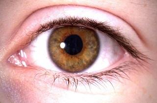 عواملی که سلامت چشمها را به خطر میاندازد,