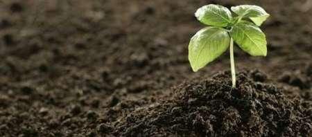 باشگاه خبرنگاران -بهبود مدیریت خاک امری موثر در جلوگیری از هدر رفت آب