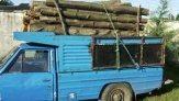باشگاه خبرنگاران -کشف 4 تن چوب قاچاق در املش