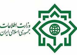 اطلاعیه وزارت اطلاعات در مورد انتشار یک عکس در فضای مجازی
