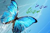 باشگاه خبرنگاران -افزایش ۲.۵ برابری پیوند کبد در استان اصفهان