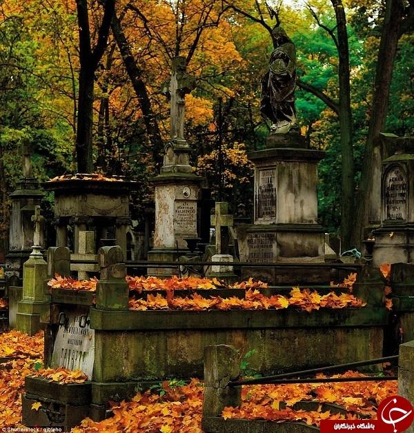گورستانهای که پیش از مرگ باید از آنها دیدن کنید +تصاویر