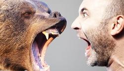 کدام حیوانات بدترین مرگ را برای انسان رقم میزنند؟ +تصاویر