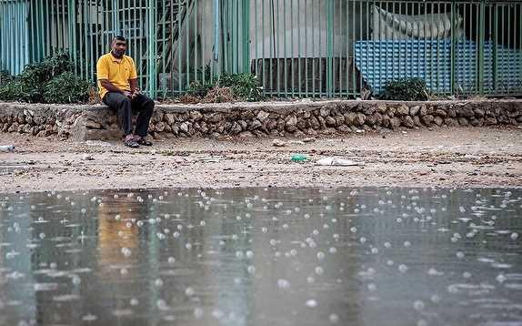 باشگاه خبرنگاران -سامانه بارشی از روز پنجشنبه وارد استان بوشهر میشود