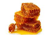 باشگاه خبرنگاران -تولید عسل در کردستان 14 درصد افزایش یافت