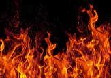باشگاه خبرنگاران -نجات یک کارگر از شعلههای آتش + فیلم