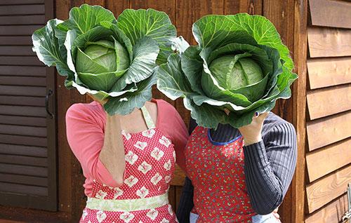 6 غذای مقوی که از زمان مادربزرگها مصرف میشود