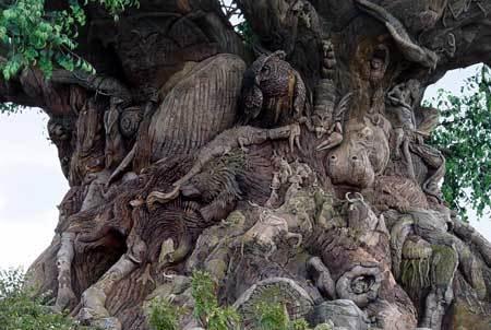 عجیب ترین درخت دنیا را از نزدیک ببینید + فیلم