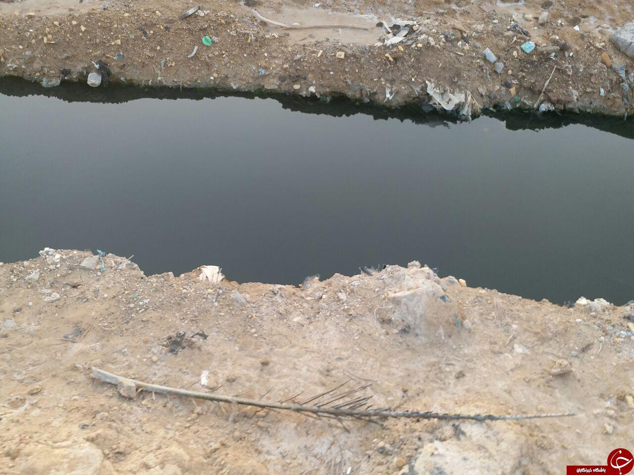 کشف جسد پسر بچه 4 ساله در کانال فاضلاب شهر بندر امام خمینی (ره) + فیلم