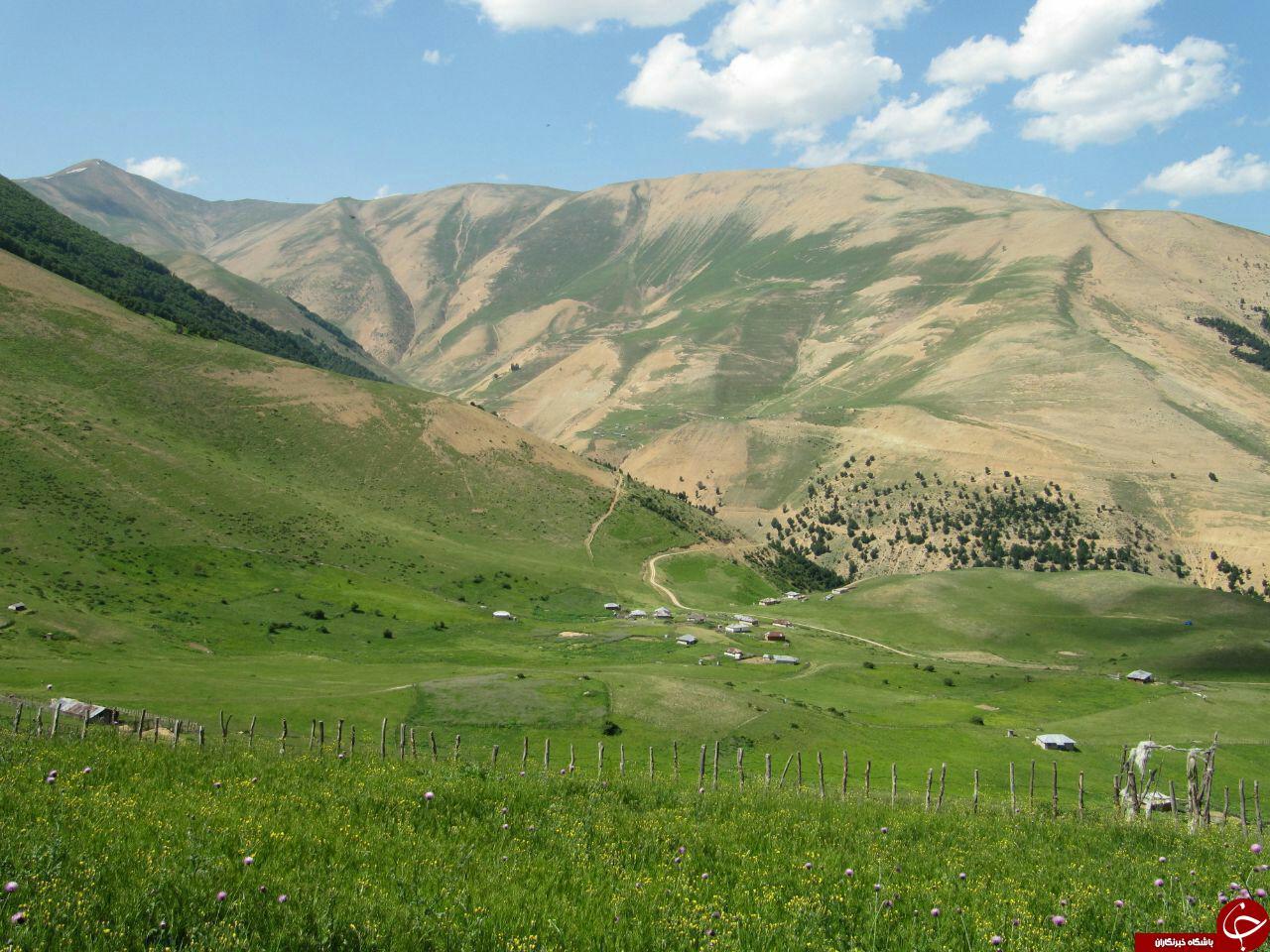 طبیعت زیبا و بکر روستای ییلاقی
