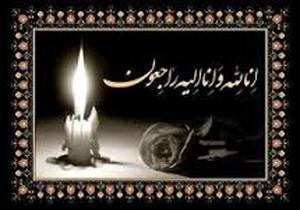 تسلیت سرپرست دانشگاه علوم پزشکی شیراز در پی درگذشت آیتالله حائریشیرازی