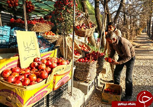 بدرقه پائیز در شب یلدا/برپایی جشن طولانیترین شب سال در فارس