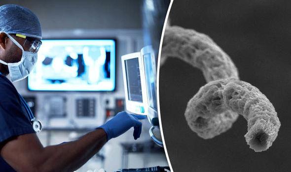 ربات قاتل سلول های سرطانی ساخته شد