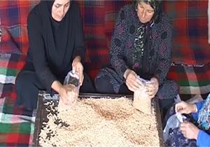 باشگاه خبرنگاران -کارآفرینی زنان روستایی در لرستان + فیلم