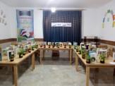 باشگاه خبرنگاران -ادای احترام اعضای باشگاه کتابخوانی یک روستا به نویسندگان کودک و نوجوان