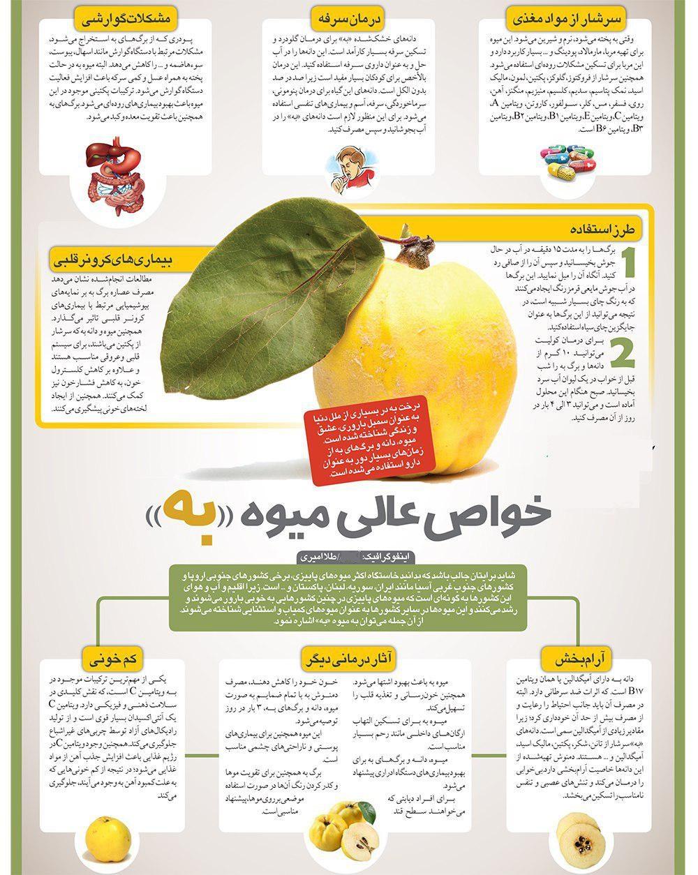 معجزه یک میوه پاییزی در درمان سرفه و کم خونی + اینفوگرافی