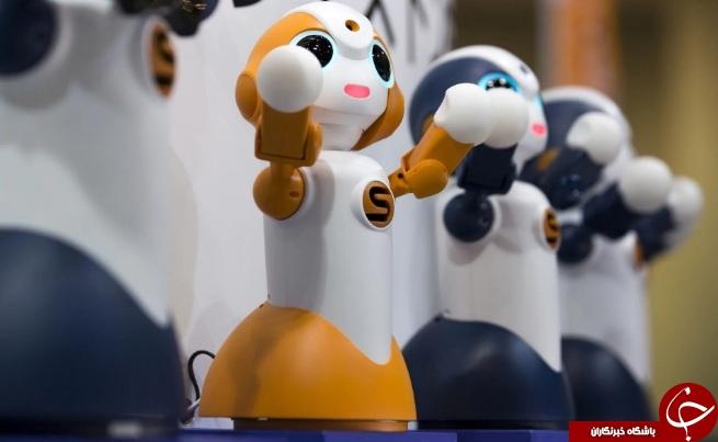 برگزاری نمایشگاه رباتیک در توکیو + تصاویر