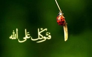 ایمان یک انسان مومن چه زمانی حقیقی و راستین است؟ +تصویر
