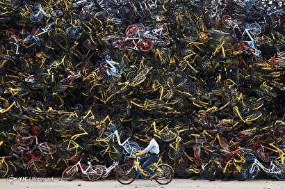 دوچرخه های رها شده
