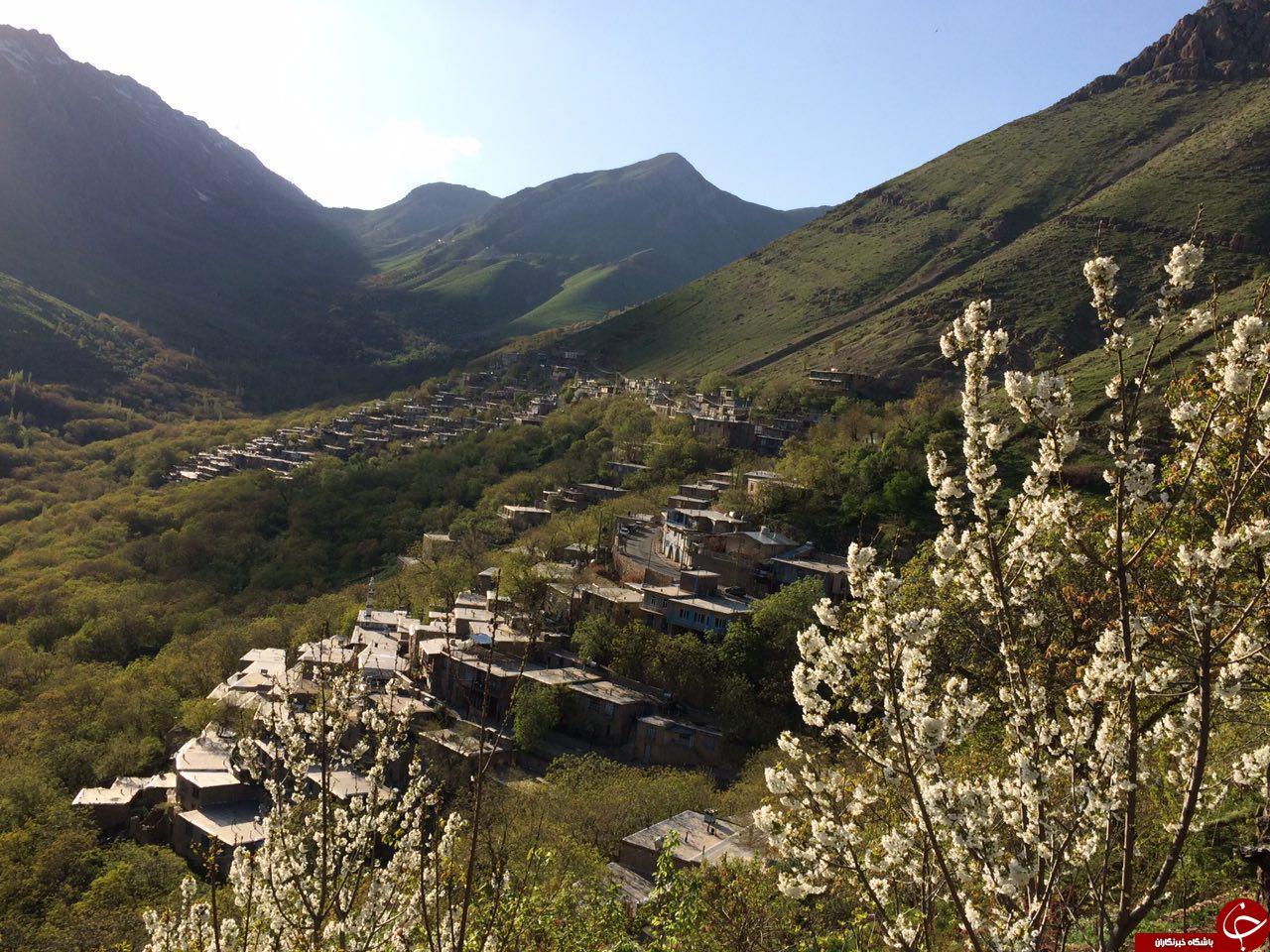 نمایی از طبیعت بهاری در «رودبر» + تصاویر