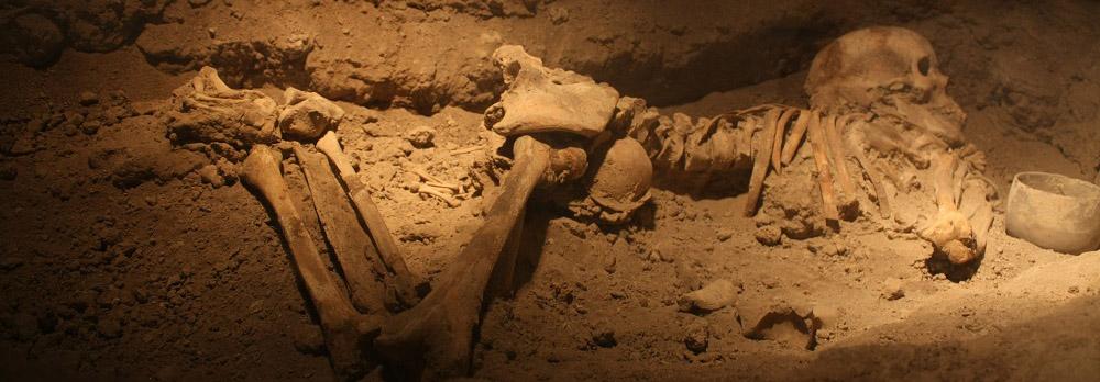 اسکلت عجیب یافت شده در دامغان