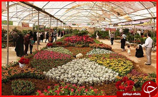جذابترین استان ها