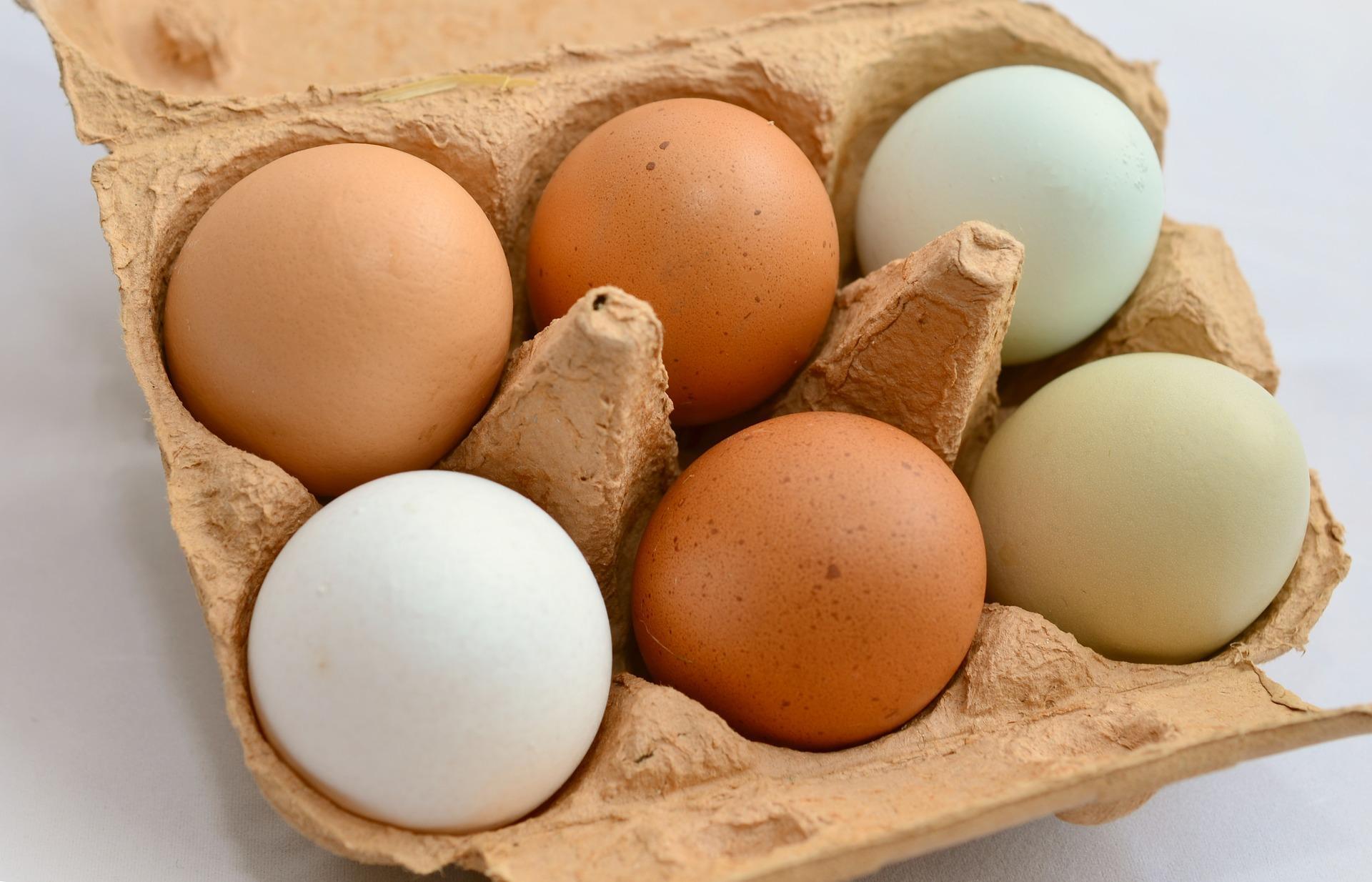 آخرین تغییرات قیمت تخم مرغ در بازار