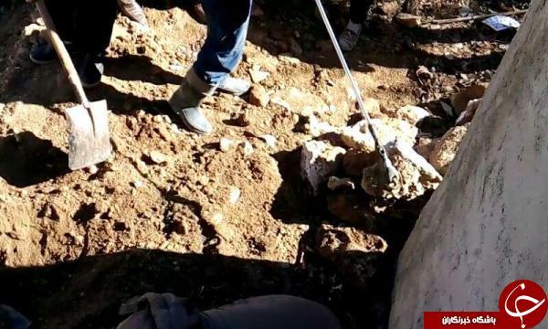 حمله مارهای سمی به یک منزل مسکونی در تکاب+تصاویر