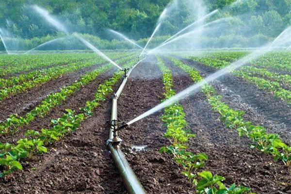 محدودیت منابع آبی و تبعات آن در شهرستان دیر