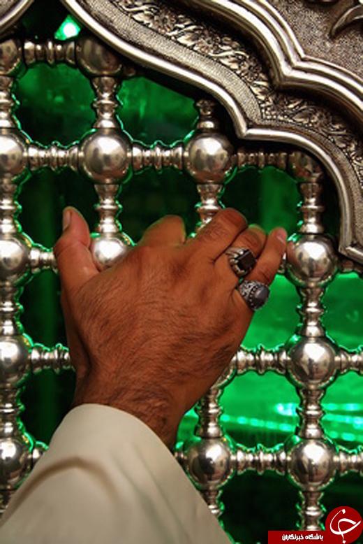 گلچینی از عکس های حرم امام حسین (ع)