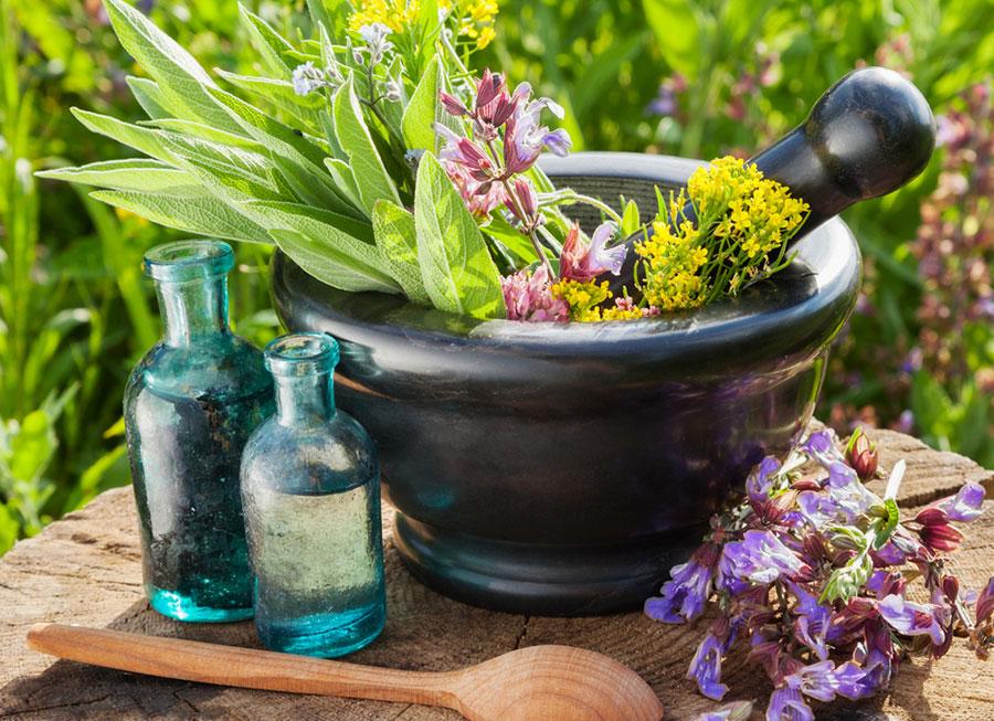 اثر جادویی گیاهان دارویی بر بدن