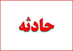 اسبی که به نماینده مجلس شورای اسلامی سواری نداد+عکس