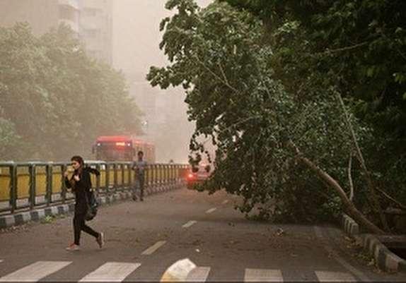 باشگاه خبرنگاران - سرعت وزش باد در مشگین شهر به 105 کیلومتر برساعت رسید