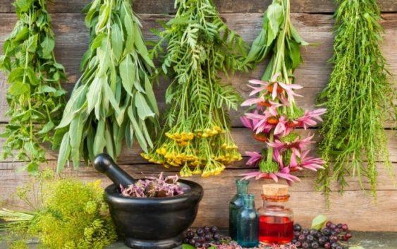 درمان فوری افسردگی با گیاهان دارویی