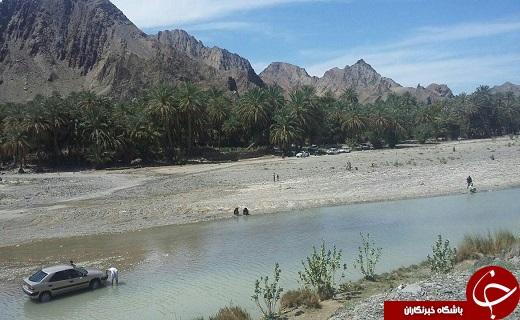 سرباز تنها زیستگاه پوزکوتاه ایرانی پذیرای گردشگران نوروزی