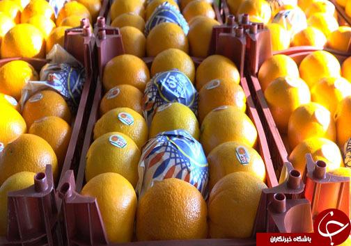 میوه شب عید با طعم ارزانی، سوغاتی از مازندران + فیلم