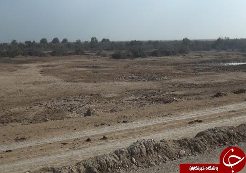 طرح ۵۵۰ هزار هکتاری، راهکاری برای احیای اراضی و اشتغال زایی