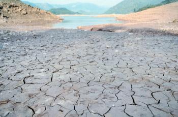 ترویج آبیاری نوین در  کشاورزی  منجی کشور از  بحران کم آبی