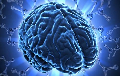 چگونه بفهمیم مغزی بالغ شده است؟/چه زمانی مغز به تکامل نهایی خود میرسد؟