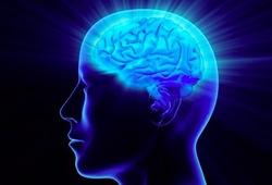 عوامل موثر بر مقدار IQ / انواع هوش را بشناسید